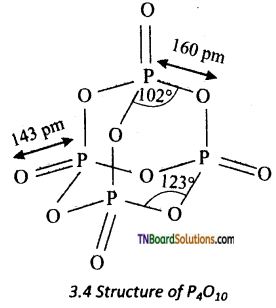 TN Board 12th Chemistry Important Questions Chapter 3 p-Block Elements – II 56
