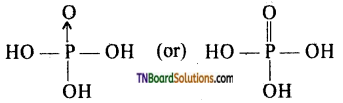 TN Board 12th Chemistry Important Questions Chapter 3 p-Block Elements – II 57