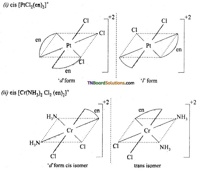 TN Board 12th Chemistry Important Questions Chapter 5 Coordination Chemistry 17