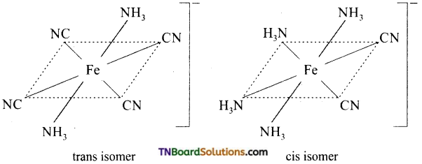 TN Board 12th Chemistry Important Questions Chapter 5 Coordination Chemistry 21