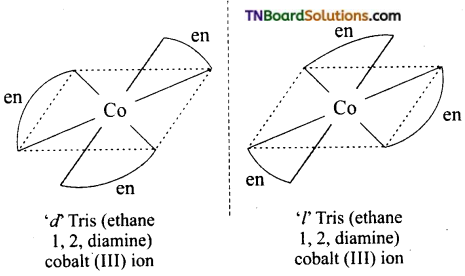 TN Board 12th Chemistry Important Questions Chapter 5 Coordination Chemistry 24