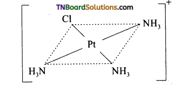 TN Board 12th Chemistry Important Questions Chapter 5 Coordination Chemistry 25