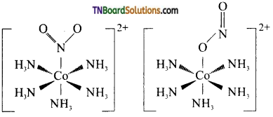 TN Board 12th Chemistry Important Questions Chapter 5 Coordination Chemistry 3