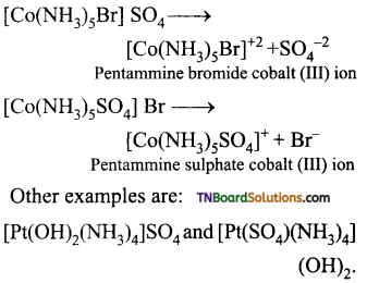 TN Board 12th Chemistry Important Questions Chapter 5 Coordination Chemistry 4