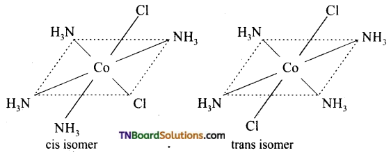 TN Board 12th Chemistry Important Questions Chapter 5 Coordination Chemistry 7
