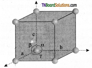 TN Board 12th Chemistry Important Questions Chapter 6 Solid State 1