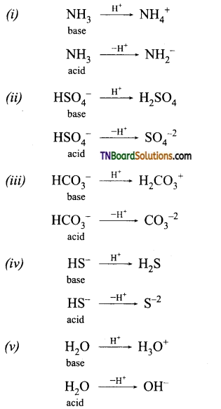 TN Board 12th Chemistry Important Questions Chapter 8 Ionic Equilibrium 1