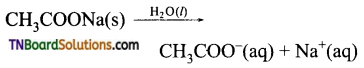 TN Board 12th Chemistry Important Questions Chapter 8 Ionic Equilibrium 15